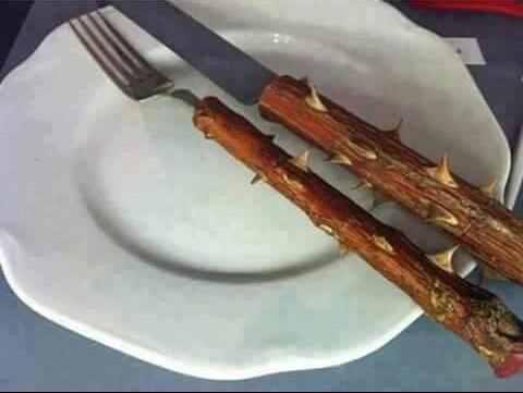diet-cutlery
